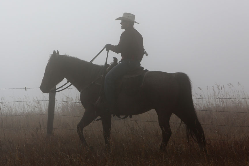 man on horse in fog